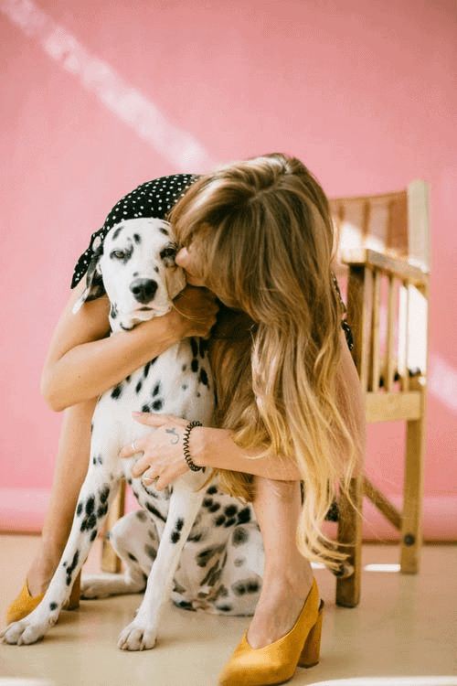 Tips on dog care
