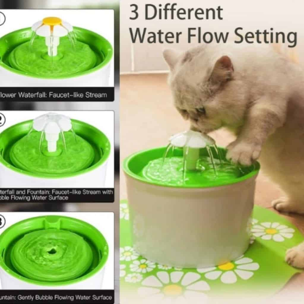 Water Fountain & Dispenser For Your Pet
