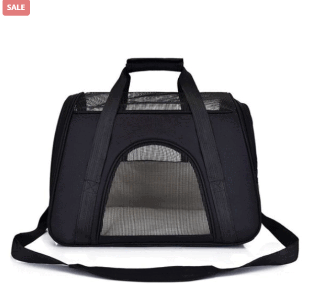 Travel Essentials Every Pet Owner Needs To Have
